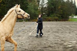 Kent Washington horse trainer