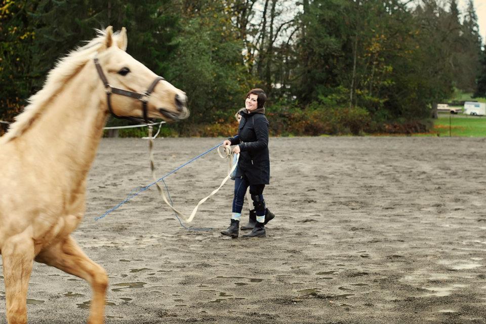 Kent Washington horse trainer