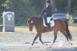 Head Coach at Freedom Run Equestrian Center